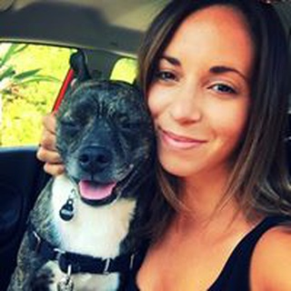 Ashley S. profile image
