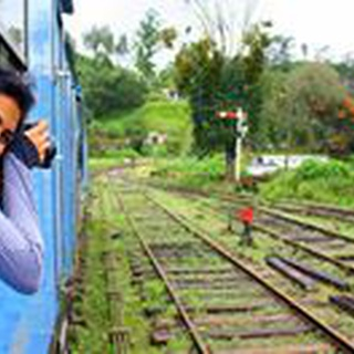 Anita P. profile image