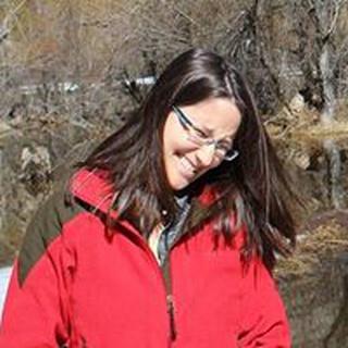 Meital B. profile image