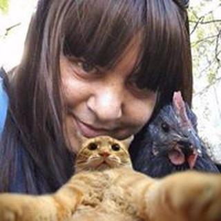 Jen Z. profile image