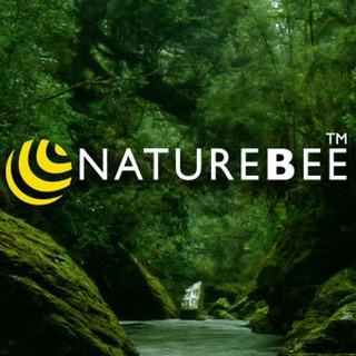 naturebee B. profile image