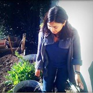 Priya M. profile image