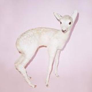 Ara A. profile image