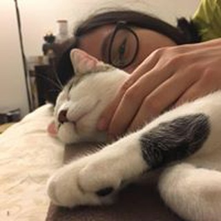 Michelle O. profile image