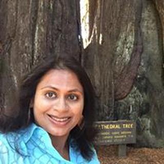 Geetanjali G. profile image