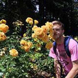 Andrew P. profile image