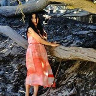 Yanz Z. profile image