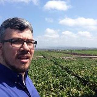 Sebastian S. profile image