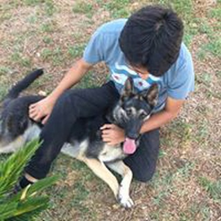 Jose G. profile image