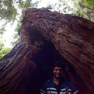 Sagar V. profile image