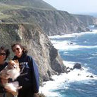 Anita Y. profile image