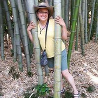 Caroline H. profile image