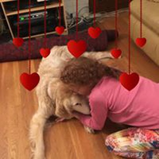 Shira L. profile image